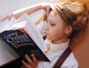 Read more about the article Anglais professionnel: un atout incontournable